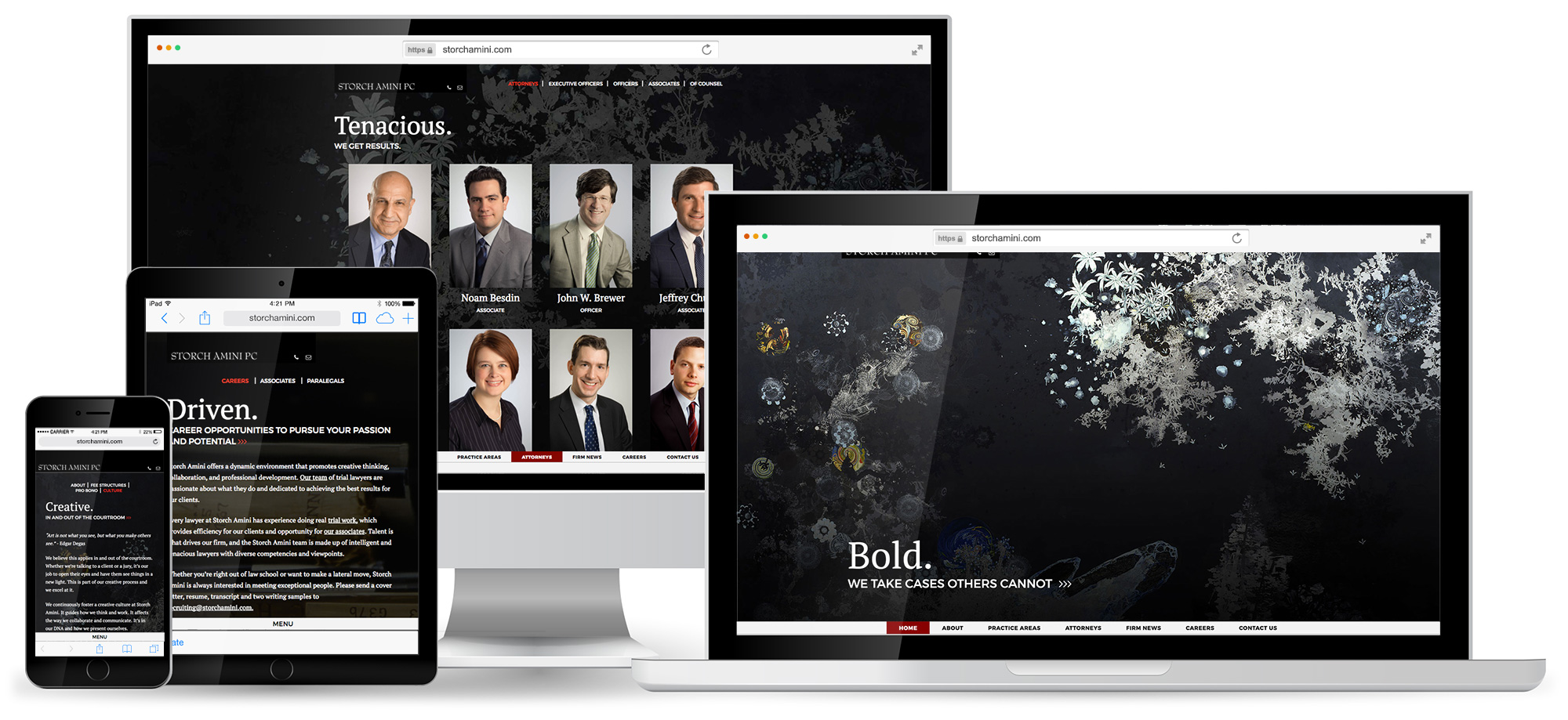 Storch Amini PC Custom WordPress Website Design